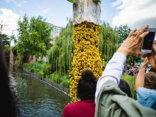 VIDEO. Duck Race lost 10.000 badeendjes in de Leie voor goede doel