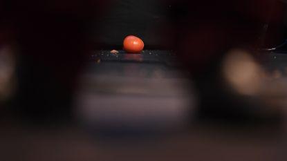 Winnaar Luc Tuymans stuurt zijn kat naar Ultimas, Jan Jambon bekogeld met tomaten