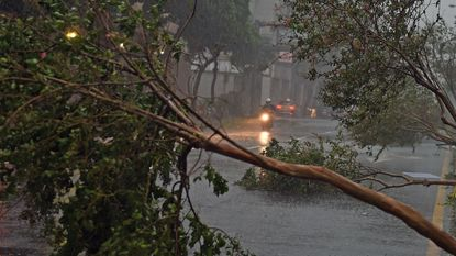 Tyfoon Soudelor zaait dood en vernieling in Taiwan