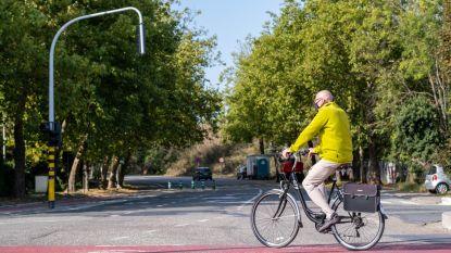 Autovrije Colomalaan, tonnagebeperking en snelheidsremmers verminderen verkeersdruk in Tervuursesteenweg