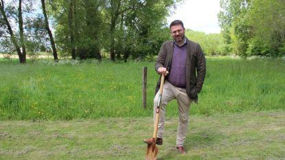Burgemeester Joris Nachtergaele komt verkiezingsbelofte na: Maarkedalse boomplantdag komt eraan