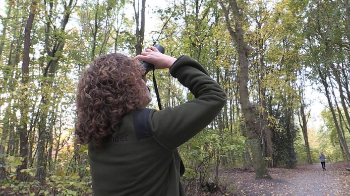 Staatsbosbeheer zoekt een mediagenieke boswachter in de Achterhoek om relaties te verbeteren en het werk van de boswachters in beeld te brengen. 'Echt wat voor mij', denkt verslaggever Gerco Mons.