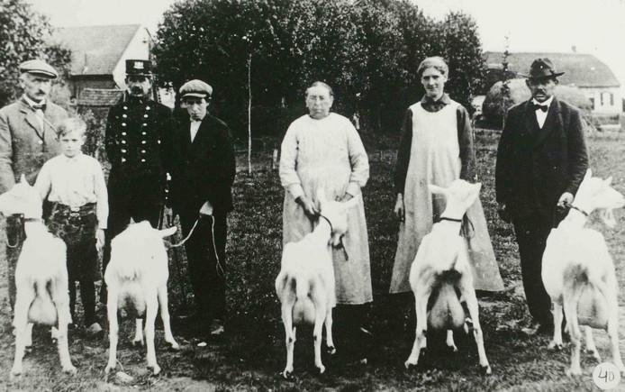 Veldwachter Piet van Wandelen in 1925 bij een geitenkeuring in Orthen.