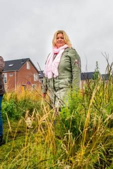 Zorgen om verplaatsen Broeckerpark in Oudewater: 'Het mag niet verdwijnen'