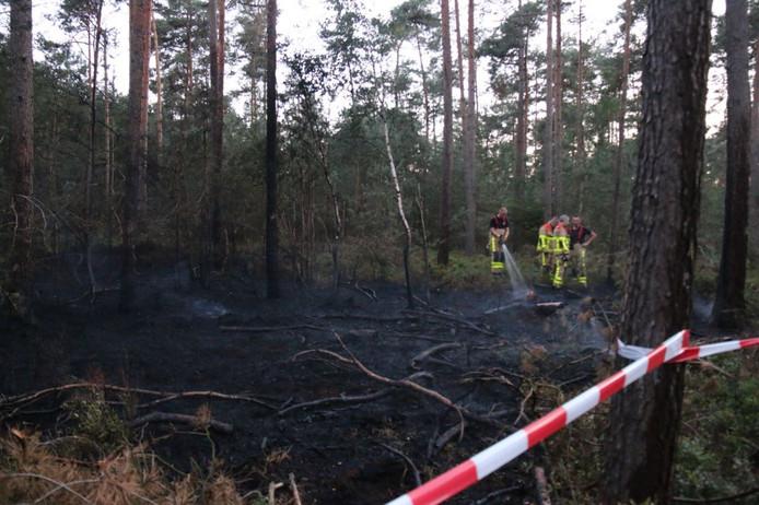 Het vuur verspreidde zich over een oppervlakte van ongeveer 10 bij 25 meter voordat de brandweer van Ugchelen het onder controle had.