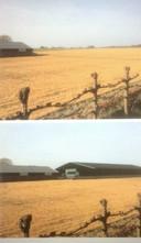 Impressie Needse berg: voor en na de bouw van de rijhal