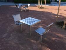 Spoorpark krijgt schaaktafels, ook andere delen van de stad staan op de wensenlijst: 'We zijn dolenthousiast'