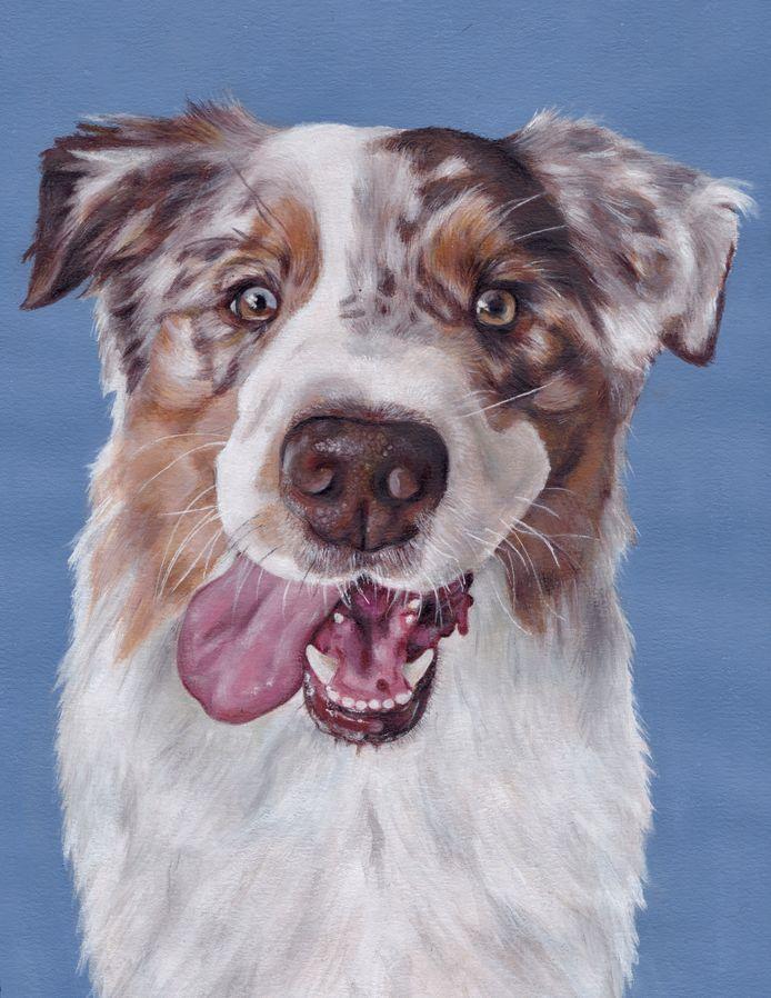 Lieke schilderde de hond die ze graag als haar hulphond wil hebben, een Australian Shepherd..