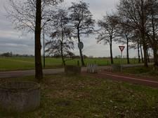 Grote zorgen om bomenkap Veenendaal