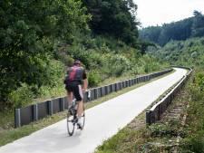 Te veel dode zandhagedissen: WMG wil meer schermen langs fietspad door spoorkuil Groesbeek