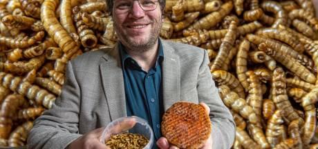 Zwollenaar wil op grote schaal meelwormen kweken: 'Over drie jaar is het eten van insecten helemaal ingeburgerd'