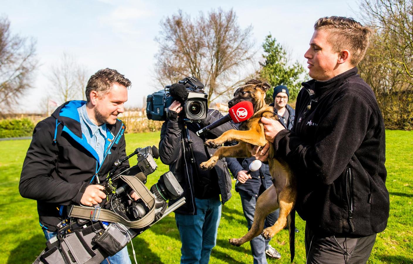 Massale media-aandacht voor Bumper, die wel raad weet met de microfoon van een verslaggever.