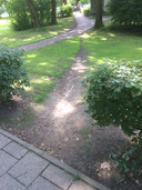 Foto 6: Waarom een bocht maken als je ook rechtdoor over het grasveld kan? Wie herkent de plek?