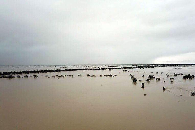 Overstroom gebied nabij Julia Creek in de staat Queensland.
