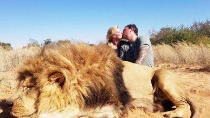 Verontwaardiging over kussende trofeejagers bij leeuw die ze net hebben doodgeschoten
