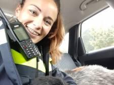 Schaap krijgt na reddingsactie bij Harderwijk knuffels op achterbank van politieauto