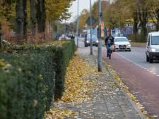 'Herfstbladeren zijn hartstikke nuttig', maar niet op de weg