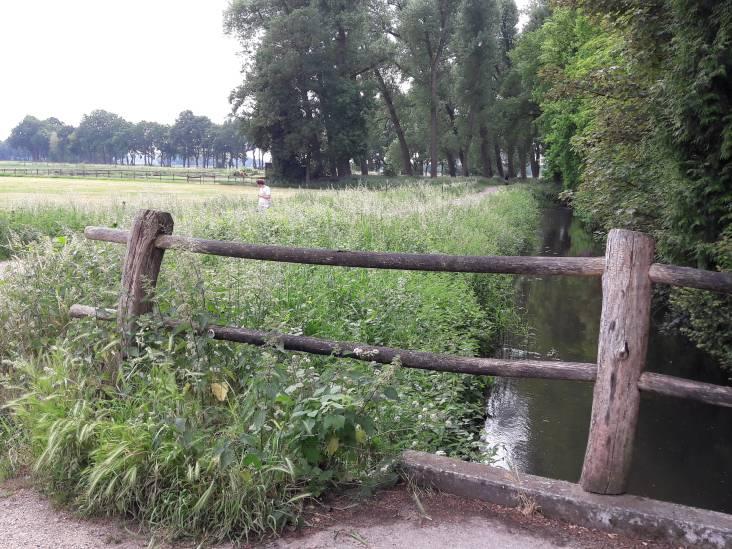 Wethouder Schellekens hoopt project Leijoever Riel vlot te trekken