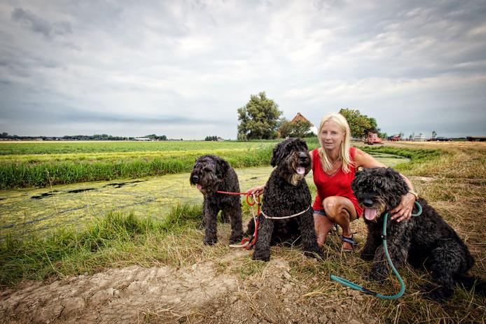 Adrienne Kivits uit Hank met drie van haar honden. Het vermoeden bestaat dat de honden zijn meegenomen en bewust op de snelweg zijn losgelaten.  Foto Johan Wouters / Pix4Profs