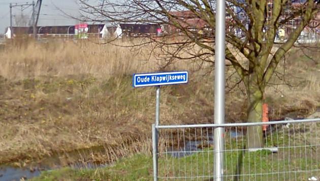 Livia werd gevonden nabij de Oude Klapwijkseweg in Pijnacker.