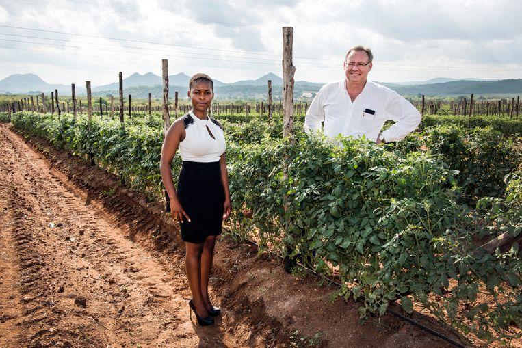 Princess Mogale (links) en Piet Prinsloo tussen de tomatenplanten van het fruitbedrijf ZZ2. Beeld Bram Lammers