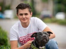 Hond Tommy mishandeld en gemarteld door agenten? Politie start intern onderzoek