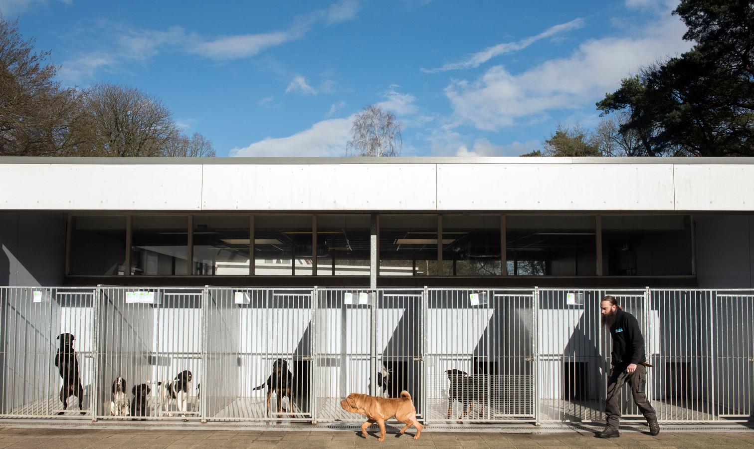 Als het aan burgemeester en wethouders, ligt blijft asiel De Ark in volle omvang op de huidige plek langs de N302 tussen Harderwijk en Leuvenum.