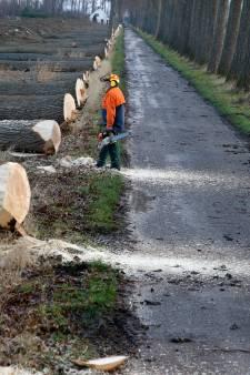 Chemische stoffen in grond zitten mogelijk ook ontpoldering Hedwigepolder dwars