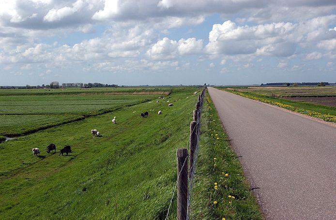 De Westdijk.