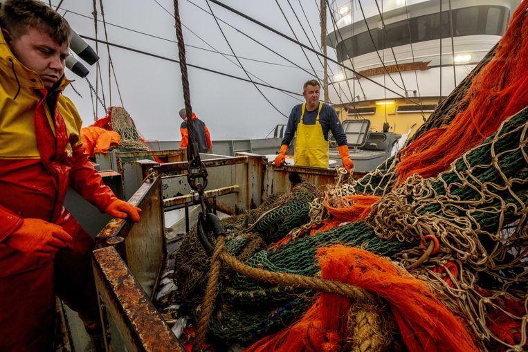 Pulsvissers op de TX38 aan het werk. Het Europees Parlement stemde eerder dit jaar voor een totaalverbod op pulsvissen.  Beeld ANP