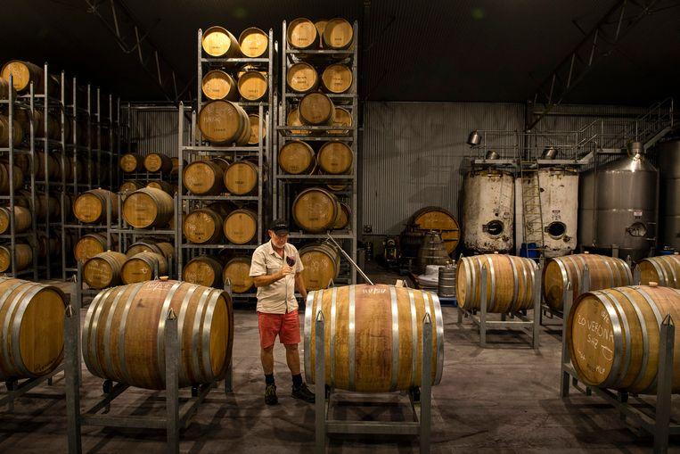 Iain Riggs heeft de taak vast te stellen welke druiven nog te redden zijn.  Beeld Hollandse Hoogte / The New York Times Syndication