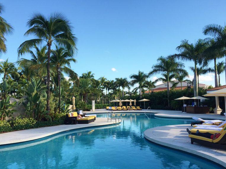 Het zwembad in het Trump National Doral in Miami, Florida Beeld null
