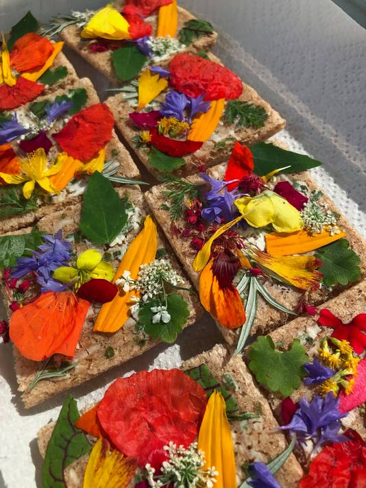 De felgekleurde crackers met eetbare bloemen van Jules Faber zijn een schot in de roos. Kleur vertelt veel over de geneeskrachtige werking van bloemen.