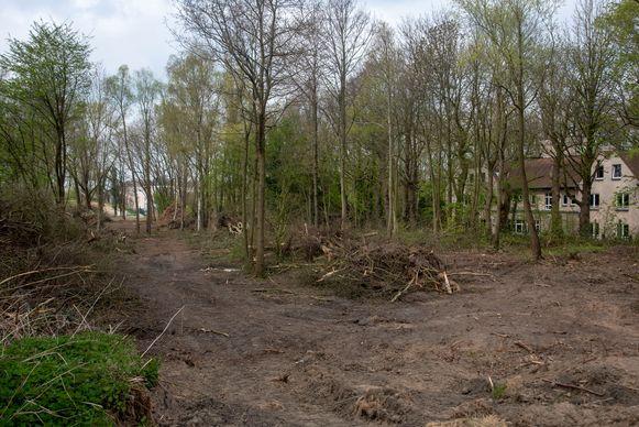 Bij opruimingswerken op het terrein sneuvelden een aantal bomen.