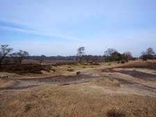 Goois Natuurreservaat ontwikkelt meeneembeker in strijd tegen afval