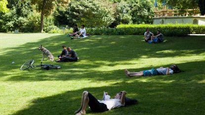 Werkstraf na hallucinante vechtpartij in Astridpark