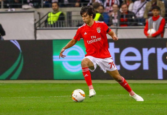 João Félix in actie voor Benfica.
