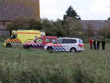 Koe die jongetje doodde in Meliskerke viel doelbewust aan
