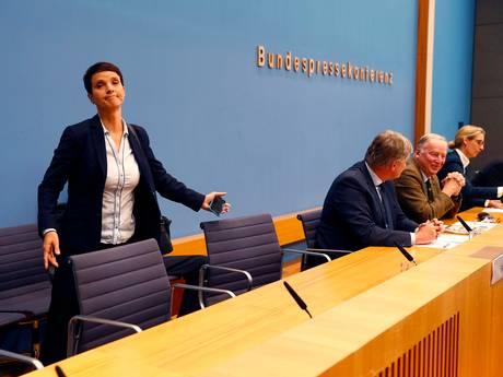 Voorzitter Duitse AfD stapt op