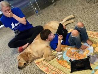 Moeder van autistisch jongetje barst in tranen uit wanneer haar zoon eindelijk rust vindt bij hulphond