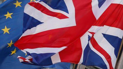 Hoe moet het nu verder met de brexit? Vijf mogelijke scenario's