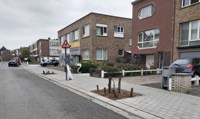 In de Velodroomstraat is een drietal jonge boompjes gesneuveld.