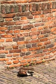 Gemeente Nijmegen: geen gevaar méér vallende stenen bij stadsmuur