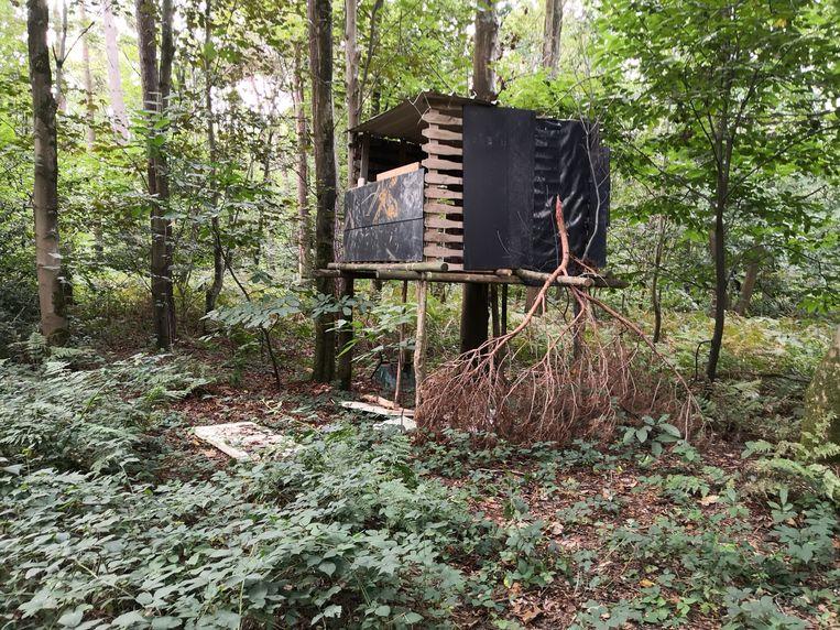 Verscholen in het Vrijbos in Houthulst heeft iemand een boomhut gebouwd.