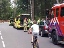 Vrouw in Driebergen gewond door vallende tak