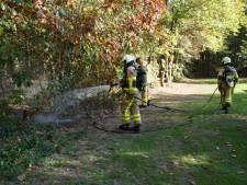 Negenjarige Nina voorkomt bosbrand in Doetinchem