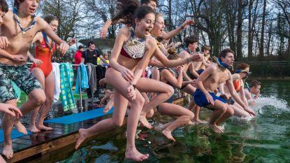 Deurnese IJsberen houden Winterzwemfeest