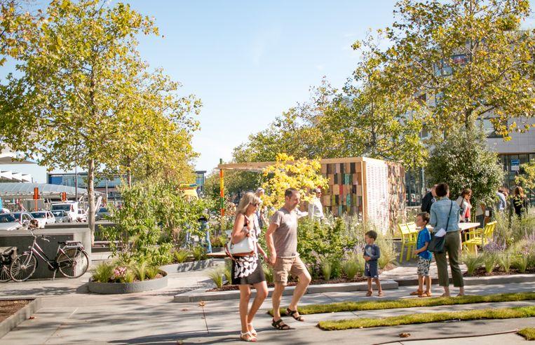 De pop-up tuin op het Stationsplein werd midden september ingericht en is  aan het laatste weekend toe.