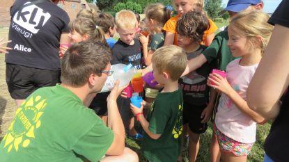 Liters water, vervroegde vuilnisophaling en fonteintjes ter verfrissing: alle hens aan dek voor tropische hitte