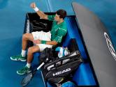 Les deux avertissements qui ont mis Novak Djokovic en pétard